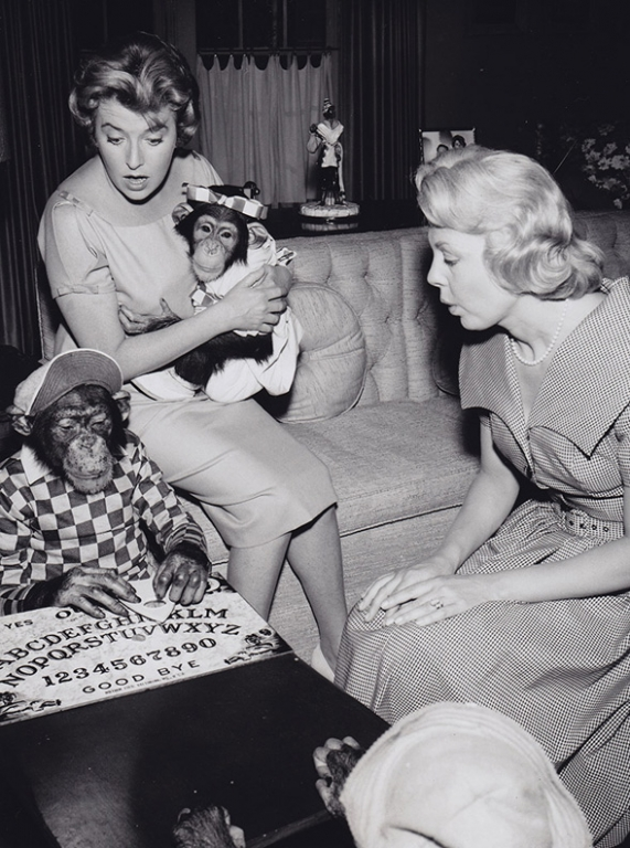 1961 The Hathaways ouija board Chimp